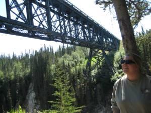 R and bridge