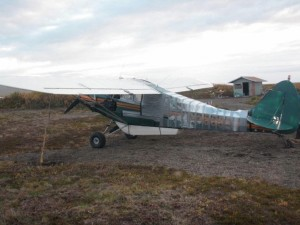 A bear chewed up this bush plane.  With a few cases of duct tape the owner was able to fly it back to town.