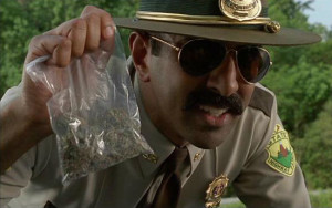 Photo courtesy of the movie Super Troopers.